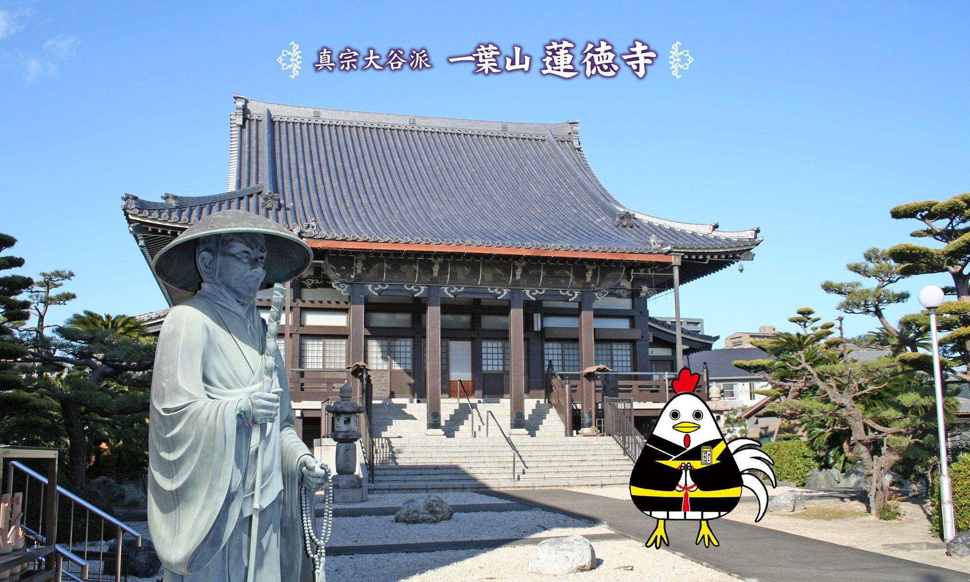 アラコッコー 蓮徳寺